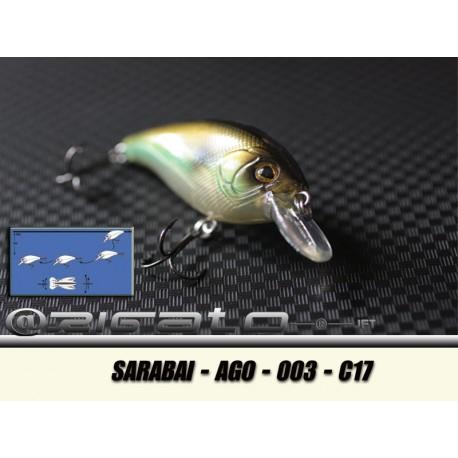 SARABAI-AGO-003 C17
