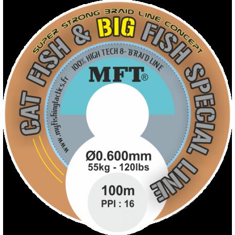 Tresse - Cat Fish & Big Fish