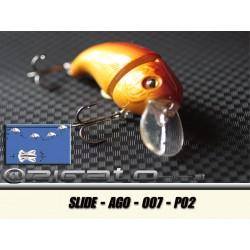 SLIDE-AGO-007 P02